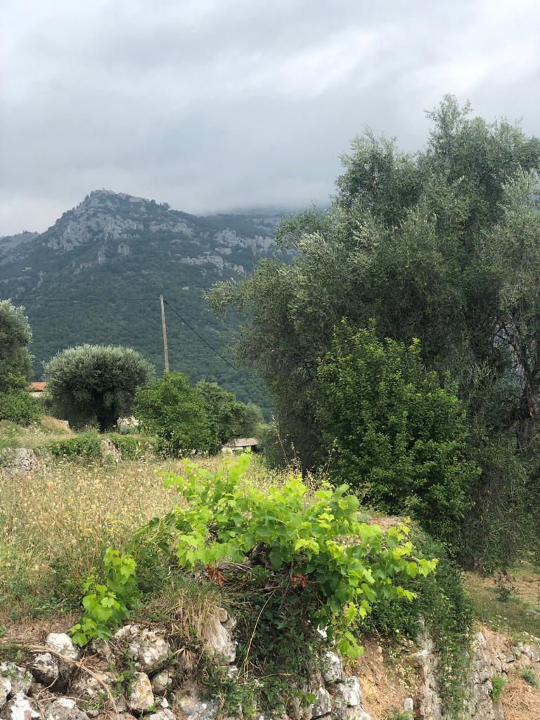 14ème et dernier repérage : de Comps-Sur-Artuby à Nice !